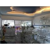 onde tem escola infantil berçário Vila Noca